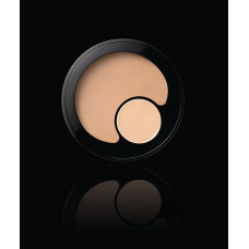 Revlon - ColorStay 2-in-1 Compact Makeup & Concealer (110 Ivory)